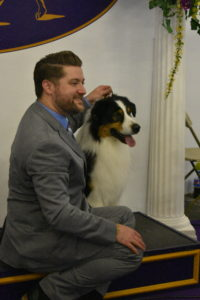 Here is a handler taking photos with his Australian Shepherd.