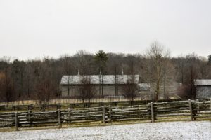 Soon after lunch, flurries began falling, covering the ground with a light layer of white. This is a view across the paddocks. Visibility remained pretty clear - you can easily see the three antique finials atop my Equipment Barn roof.