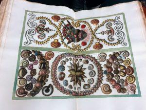 This is called Albertus Seba, Cabinet of natural curiosities, Amsterdam 1734-65.