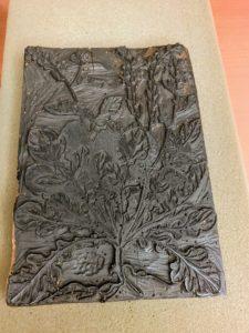 This is a Wolfgang Meyerpeck woodblock of Eruca sativa, circa 1560.
