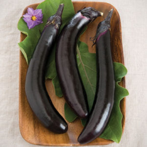 'Orient Express' is a very dependable eggplant. These plants produce armloads of attractive, slender, and glossy fruits eight to 10-inches long. They are tender, delicately flavored, and quick cooking. (Photo courtesy of Johnny's Selected Seeds)