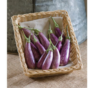 This purple-and-white mini eggplant is called 'Fairy Tale'. These are attractive, two to four inch long fruits with wonderful flavor and no bitterness. (Photo courtesy of Johnny's Selected Seeds)