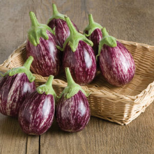 And here is 'Calliope' - a small, oval white-and-purple variegated Indian eggplant. 'Calliope' does well even in cooler climates and is flavorful picked either young or fully mature. (Photo courtesy of Johnny's Selected Seeds)