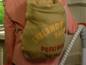 My cordless vacuum is powered by a sack of homegrown, organic potatoes, fresh from Skylands, my home in Maine.