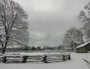 This photo was taken around 7:20am - and the skies are a bit lighter. This is the carriage road in front of my stable barn on the right.