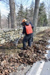 Elsewhere around the farm, the crew rakes away lots of leaves and debris that have accumulated on the beds during winter.