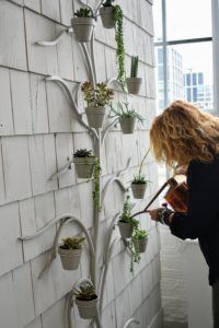 Here, Danielle waters the plants in my wall tree decoration from QVC.