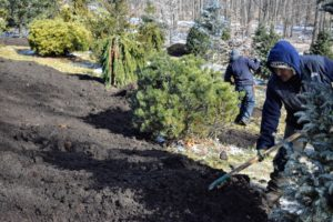 With this organic mulch, heavy soils are better equipped to hold water and resist compaction – reducing erosion and runoff.