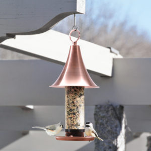 And don't forget our avian friends - here is my copper bird feeder, also from QVC. I have several of these hanging from the beams of my long pergola.