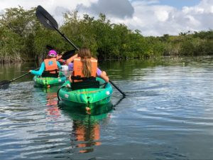 Another destination is Costa Maya, a stretch of Caribbean coast on Mexico's eastern Yucatán Peninsula, where you can see native fish, monkeys, and birds while kayaking through its rivers and streams.