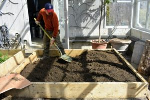 "Once the beds are filled, they are moistened with an even, fine spray to settle the soil. More soil is added to ""top it off"". Over time the soil will settle an inch or two more and should be amended."