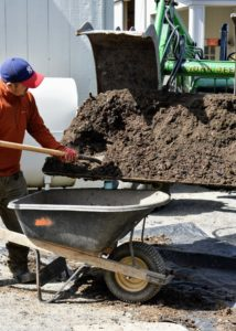 Here is Chhiring shoveling our topsoil and composted manure mix into a wheelbarrow. No matter how great the topsoil is, always use compost in the gardens and be sure to add fresh amounts every year.