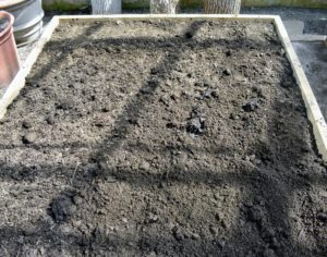 Do you know the difference between raised beds and garden planters? Raised beds do not have bottoms; they are open to the ground, which allows plant roots to go further down for available nutrients. It is a great way to plant.