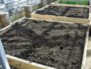 By raising the soil level, raised garden beds can also be easier to maintain - they help reduce back strain when bending over to tend the bed - just be certain the bed is narrow enough so all areas can be reached without stepping on the soil.
