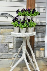 The little pots also look great on one of my Indoor/Outdoor Faux Bois Plant Stands. These plant stands have such a realistic all-over bark texture. Three faux-wood branches support a ringed top. I offer three sizes – 32-inches tall, 26-inches tall and 22-inches tall.