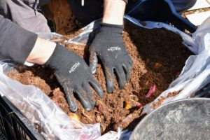 Here is Ryan organizing the lily bulbs with his pair of Non-Slip Grip Garden Gloves from my QVC collection - this pair in black.