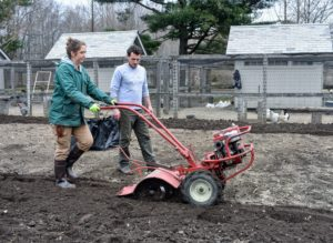 Zoe also takes a turn using the rototiller.