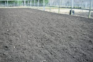 Here is one side all done. Building up the soil is the most important part of preparing a garden for growing vegetables and flowers. A deep, organically rich soil will encourage and support the growth of healthy root systems.