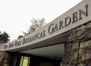 The Garden Furniture & Antiques Fair is held every spring to benefit NYBG's Fund for Horticulture, which directly supports curators and gardeners who work tirelessly to make The New York Botanical Garden one of the most important horticultural showplaces in the world.