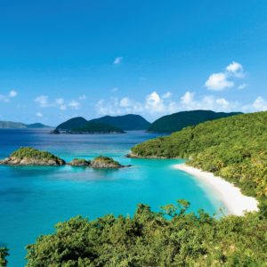 St. John is the smallest of the three U.S. Virgin Islands, which are located in the Caribbean Sea. Its forests shelter resident and migratory birds, including cuckoos, warblers, and hummingbirds, while mangroves support corals and anemones.