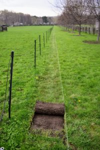 I wanted to plant hedges on both the east and west sides of the South Paddock. This paddock is quite long. Gardener's twine and stakes are used to mark the edge of the planting bed and to guide the motorized sod cutter.