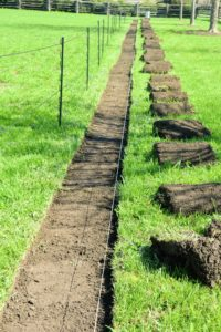 Because it was such a large project, it was done in phases. All the sod pieces were neatly rolled and placed to one side.