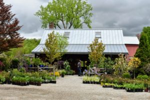 It was started in 1980 as a part-time business on an abandoned dairy farm. Owners Dennis and Judy Mareb opened Windy Hill to the public in 1986. The garden center is a 36-foot by 24-foot timber-frame structure cut from hemlocks on the property.