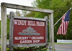 Windy Hill Farm is in western Massachusetts - not far from the Connecticut border. It includes a seven-acre apple orchard, a one-acre blueberry field, eight acres of field-grown specialty ornamental nursery stock, a retail garden center, and a full-service landscape department.