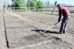 Ryan uses this bed preparation rake also from Johnny's Selected Seeds to create furrows in the soil. Hard plastic tubes slide onto selected teeth of the rake to mark the rows.