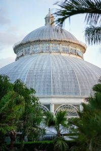 This is NYBG's landmark Enid A. Haupt Conservatory. It is so pretty any time of day. The Conservatory is the nation's largest Victorian glasshouse. The Palm Court, with its spectacular 90-foot dome and dramatic reflecting pool, is often used for receptions and other gatherings. (Photo courtesy of Battalion PR)