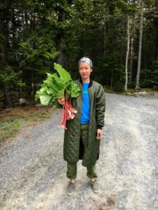 That evening back at Skylands, Kate and some of my other guests went out to pick some rhubarb for our dessert.