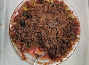 With the fresh rhubarb, I made this rhubarb crisp. Each piece was served with homemade creme fraiche.