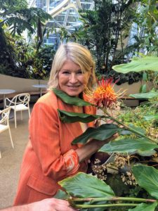 Here I am next to a Hedychium longicornutum. This rare epiphytic ginger lily from southeast Asia produces gracefully arching two-foot tall stems topped by bright red and yellow petaled flowers produced from a cone-like inflorescence - so gorgeous.