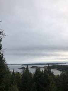 And here is a view from my large terrace looking out at the sweeping views of Seal Harbor. Skylands is such a beautiful and serene place - I can't wait to return.