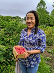 This day brought a drizzle of rain, but Sanu is still quite happy to pick all these delicious berries - the boxes are filled very quickly.