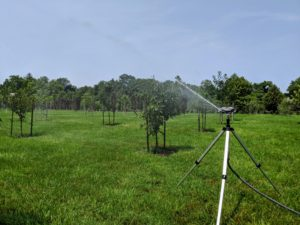 I have more than 200-fruit trees in this field. The adjustable tripod can reach a height of 58-inches and has spiked feet to keep it stable on gravel, grass or soil.
