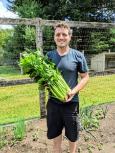 Here is Ryan soon after picking these two beautiful heads of celery. To get celery to look this good, it requires rich soil, plenty of water, and protection from the hot sun and high temperatures.