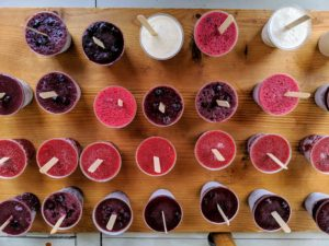 A big highlight - many, many delicious popsicles. We made raspberry, strawberry, blackberry, yogurt, and coconut flavored fruit pops - and many of the berries were picked right here at the farm!