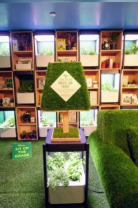 Even the end-tables and lamps feature the outdoor theme. This is the Miracle-Gro Twelve Indoor Growing System, specially designed for growing a wide variety of leafy greens, herbs, and flowers like lettuce, kale, mint, basil, and marigolds indoors. It's easy-to-use with a compact and thoughtful design that fits anywhere.