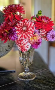 And nearby is this arrangement - so many different kinds of dahlias and every one of them pretty. If you don't already, I hope this inspires you to grow your own dahlias. What are your favorite varieties? Share them in the comments below - I can't wait to hear from you.