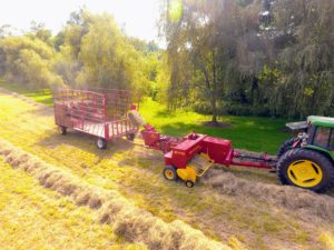 The bale is then propelled into the wagon by a mechanical arm called a thrower or a kicker.