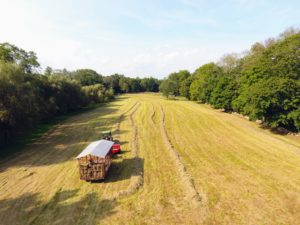 Here is a view of the baler from above. It is easy to see what rows have been baled.