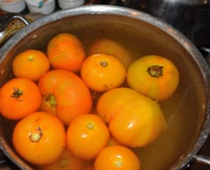 The next step is to place the scored tomatoes into a pot of boiling water – just long enough for the skins to soften and loosen.