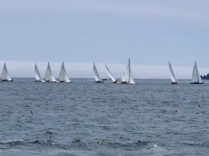 There were many boats - my grandchildren, who are taking sailing lessons and love to sail. enjoyed watching the boats race.