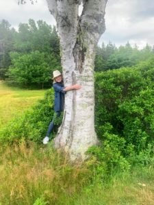 On the morning after my birthday, we started off with a walk around Little Long Pond. Here I am by a giant birch tree.