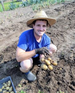 Here's Ryan with a good bunch of potatoes. Another tip - never wash potatoes until right before using – washing them shortens the potato's storage life.