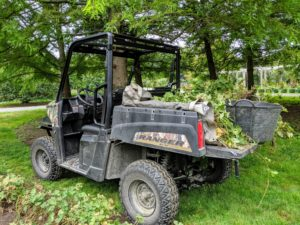 Next, the plants are moved in our Polaris Ranger down to the Tenant House garden for replanting.