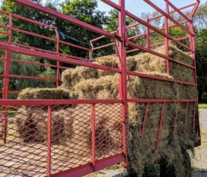 The wagon has high walls on the left, right, and back sides, and a short wall on the front side, to contain the randomly piled bales, which are then stacked neatly from front to back.
