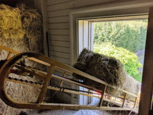 Pete is ready to remove the bale from the hay elevator.