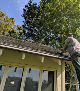 Closer to the coop, Pete adjusts the monofilament lines near the roof, so hawks cannot squeeze through any gaps.